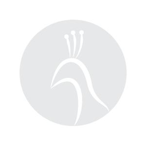 Wit kussen met Pearl logo